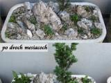 013 Nádoby na terase