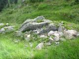 Prírodná skalka